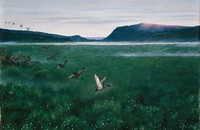 Theodor_Kittelsen_-_The_twelwe_wild_Ducks_-_Google_Art_Project